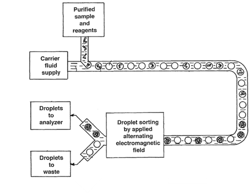 Chip-based droplet sorting