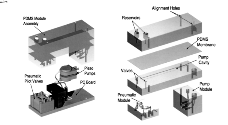 Polymer-based microfluidic system